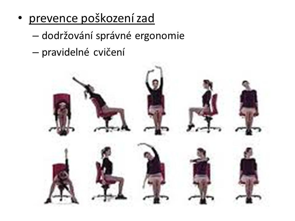 prevence poškození zad – dodržování správné ergonomie – pravidelné cvičení