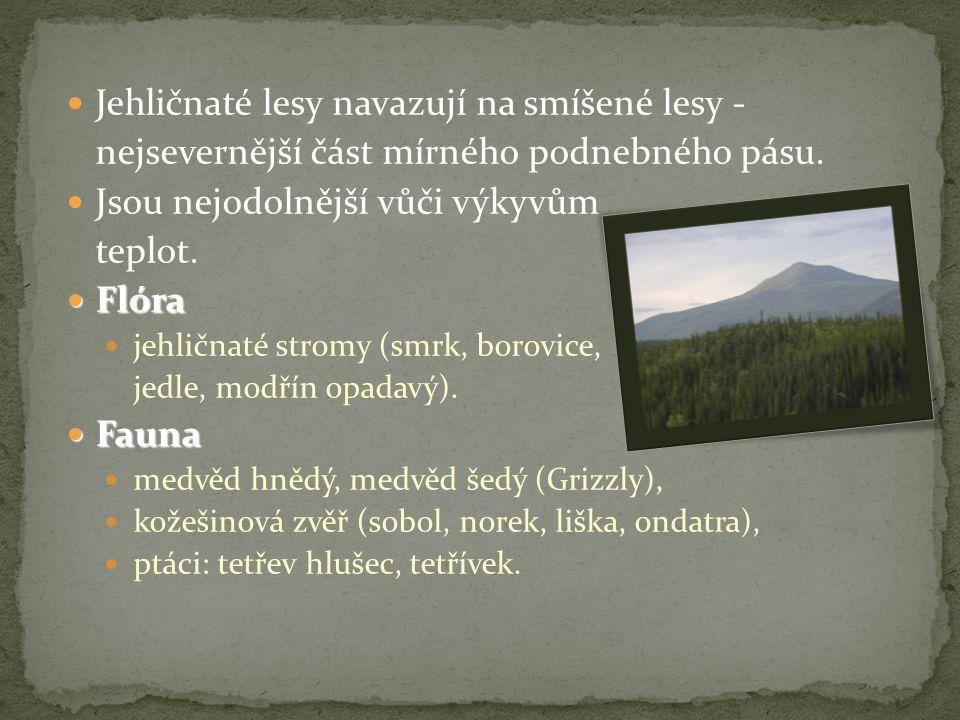 Jehličnaté lesy navazují na smíšené lesy - nejsevernější část mírného podnebného pásu.