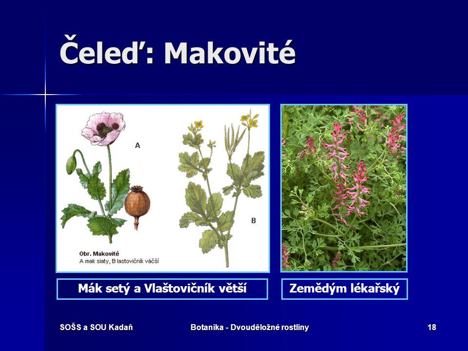 SOŠS a SOU KadaňBotanika - Dvouděložné rostliny17 Čeleď: Makovité Květní diagram makovitých rostlin