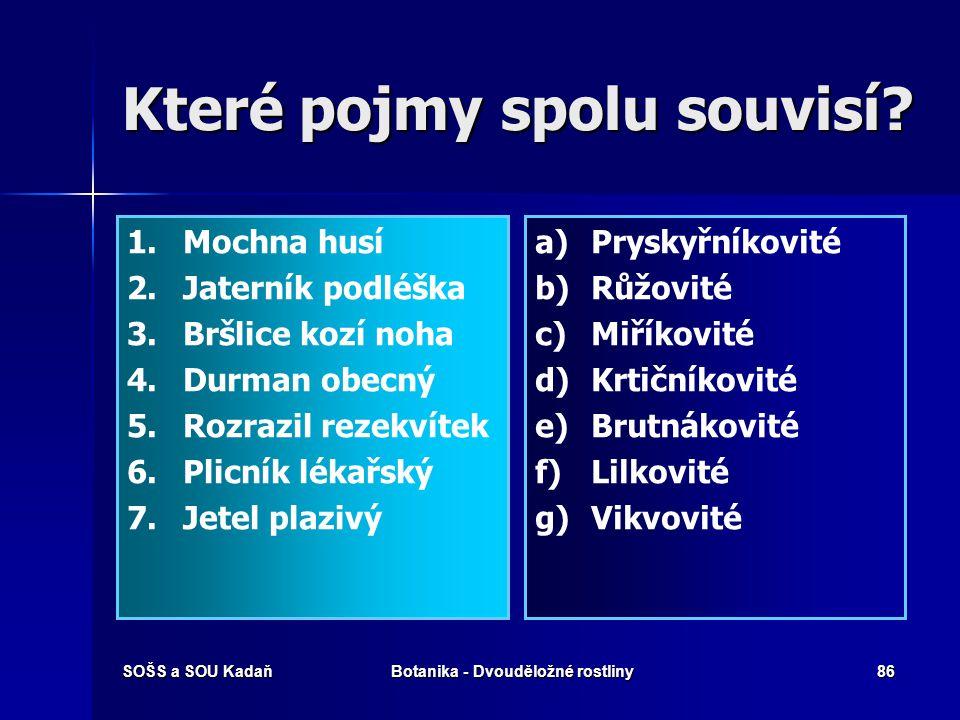 SOŠS a SOU KadaňBotanika - Dvouděložné rostliny85 Vyhodnocení 1.c 2.d 3.b 4.a