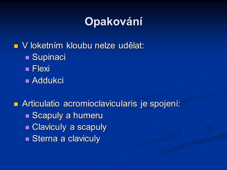 Opakování V loketním kloubu nelze udělat: V loketním kloubu nelze udělat: Supinaci Supinaci Flexi Flexi Addukci Addukci Articulatio acromioclaviculari
