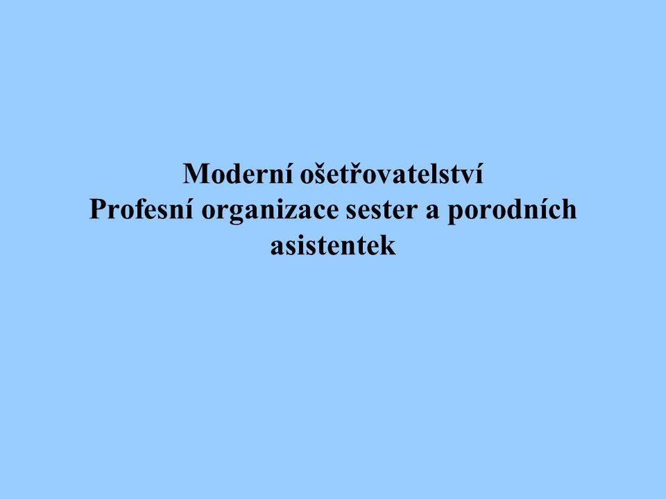 Moderní ošetřovatelství Profesní organizace sester a porodních asistentek