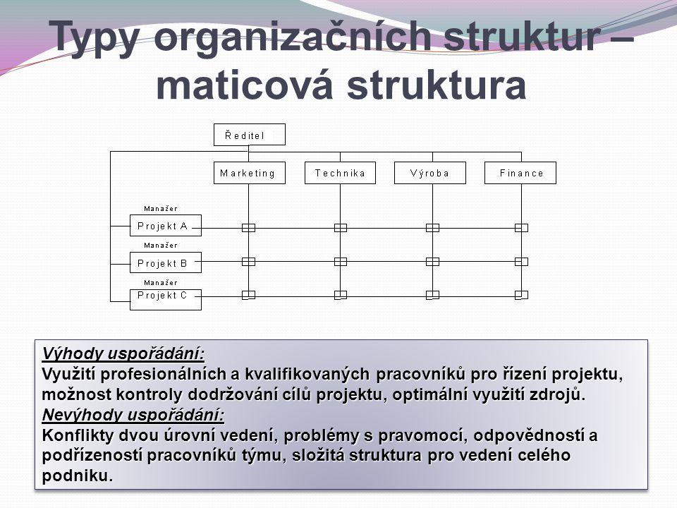 Výhody uspořádání: Využití profesionálních a kvalifikovaných pracovníků pro řízení projektu, možnost kontroly dodržování cílů projektu, optimální využ