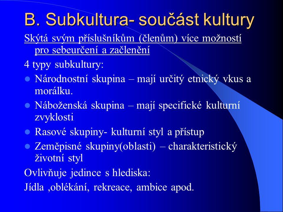 B. Subkultura- součást kultury Skýtá svým příslušníkům (členům) více možností pro sebeurčení a začlenění 4 typy subkultury: Národnostní skupina – mají