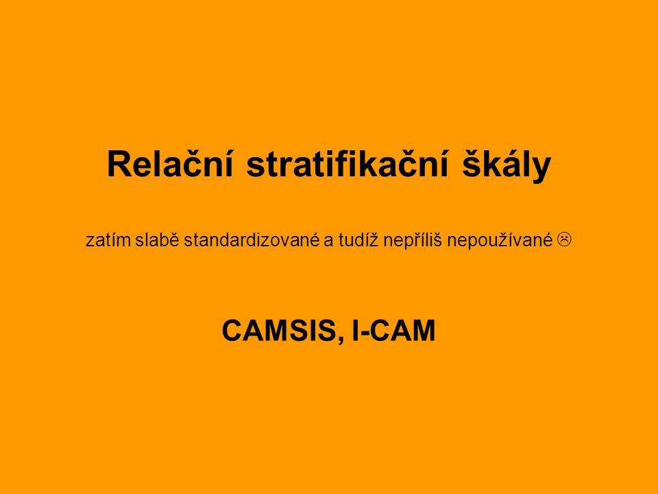 Relační stratifikační škály zatím slabě standardizované a tudíž nepříliš nepoužívané  CAMSIS, I-CAM