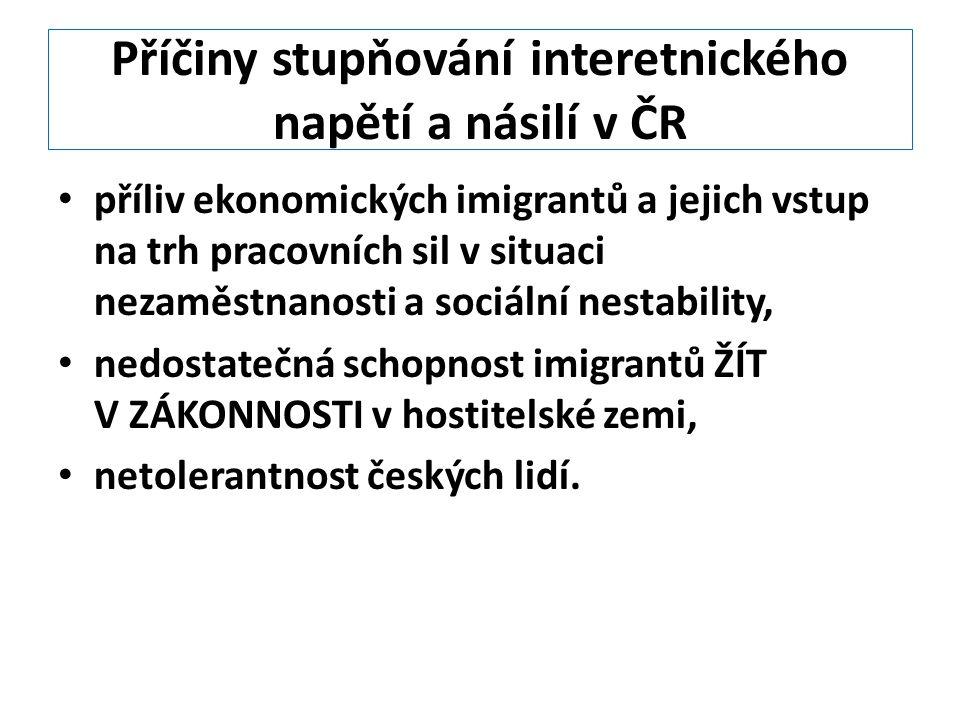 Příčiny stupňování interetnického napětí a násilí v ČR příliv ekonomických imigrantů a jejich vstup na trh pracovních sil v situaci nezaměstnanosti a