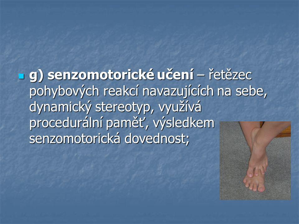 g) senzomotorické učení – řetězec pohybových reakcí navazujících na sebe, dynamický stereotyp, využívá procedurální paměť, výsledkem senzomotorická do