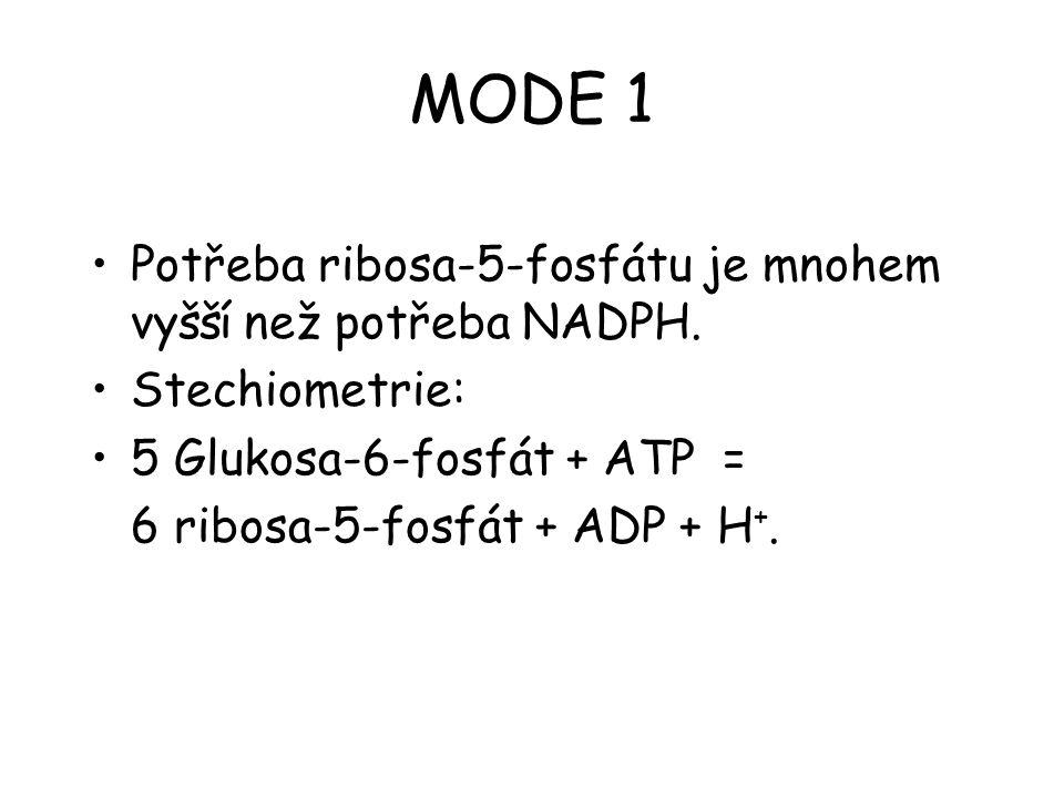 MODE 1 Potřeba ribosa-5-fosfátu je mnohem vyšší než potřeba NADPH. Stechiometrie: 5 Glukosa-6-fosfát + ATP = 6 ribosa-5-fosfát + ADP + H +.