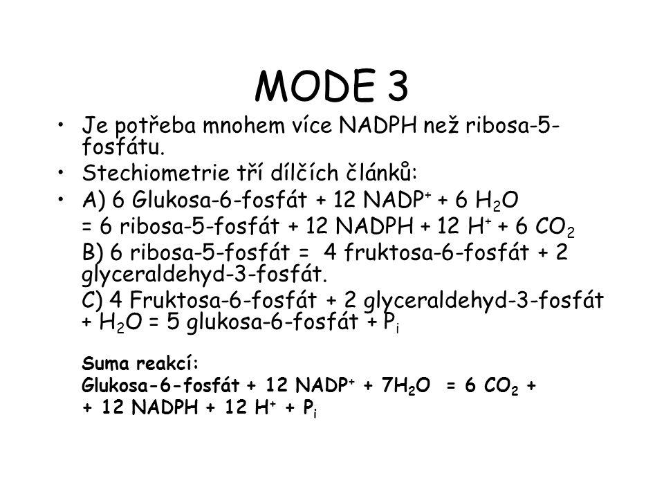 MODE 3 Je potřeba mnohem více NADPH než ribosa-5- fosfátu. Stechiometrie tří dílčích článků: A) 6 Glukosa-6-fosfát + 12 NADP + + 6 H 2 O = 6 ribosa-5-