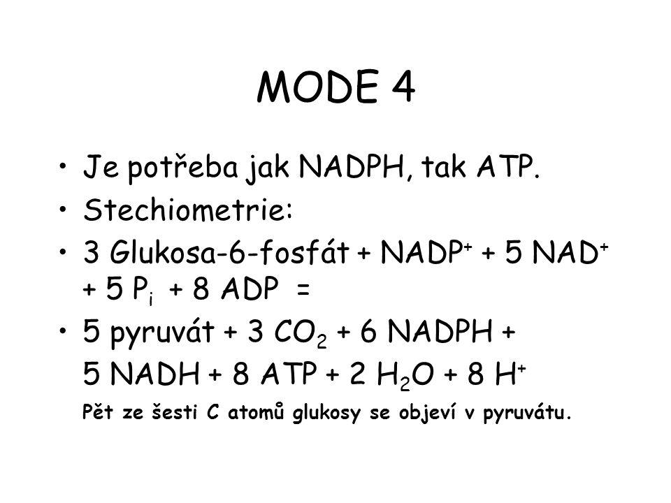MODE 4 Je potřeba jak NADPH, tak ATP. Stechiometrie: 3 Glukosa-6-fosfát + NADP + + 5 NAD + + 5 P i + 8 ADP = 5 pyruvát + 3 CO 2 + 6 NADPH + 5 NADH + 8