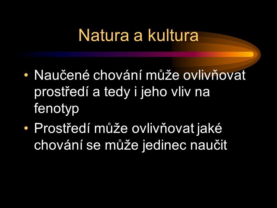 Natura a kultura Naučené chování může ovlivňovat prostředí a tedy i jeho vliv na fenotyp Prostředí může ovlivňovat jaké chování se může jedinec naučit