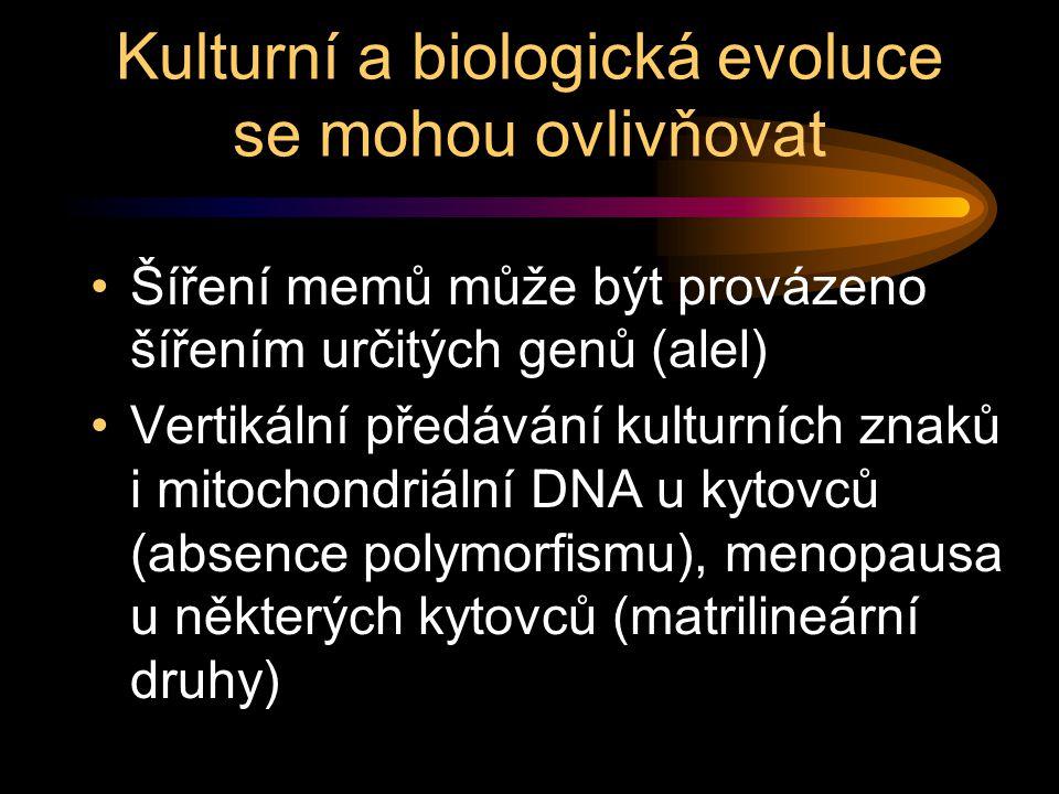 Kulturní a biologická evoluce se mohou ovlivňovat Šíření memů může být provázeno šířením určitých genů (alel) Vertikální předávání kulturních znaků i mitochondriální DNA u kytovců (absence polymorfismu), menopausa u některých kytovců (matrilineární druhy)