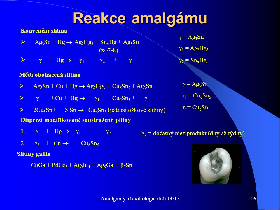 Amalgámy a toxikologie rtuti 14/1516 Reakce amalgámu Konvenční slitina  Ag 3 Sn + Hg  Ag 2 Hg 3 + Sn x Hg + Ag 3 Sn (x~7-8)   + Hg   1 +  2 + 