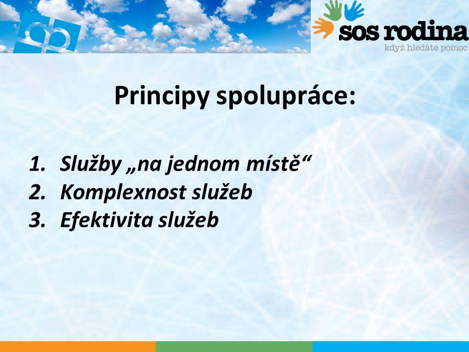 "Principy spolupráce: 1.Služby ""na jednom místě 2.Komplexnost služeb 3.Efektivita služeb"