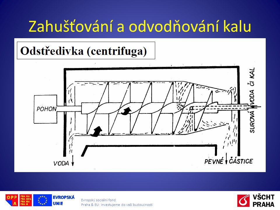 Evropský sociální fond Praha & EU: Investujeme do vaší budoucnosti Zahušťování a odvodňování kalu