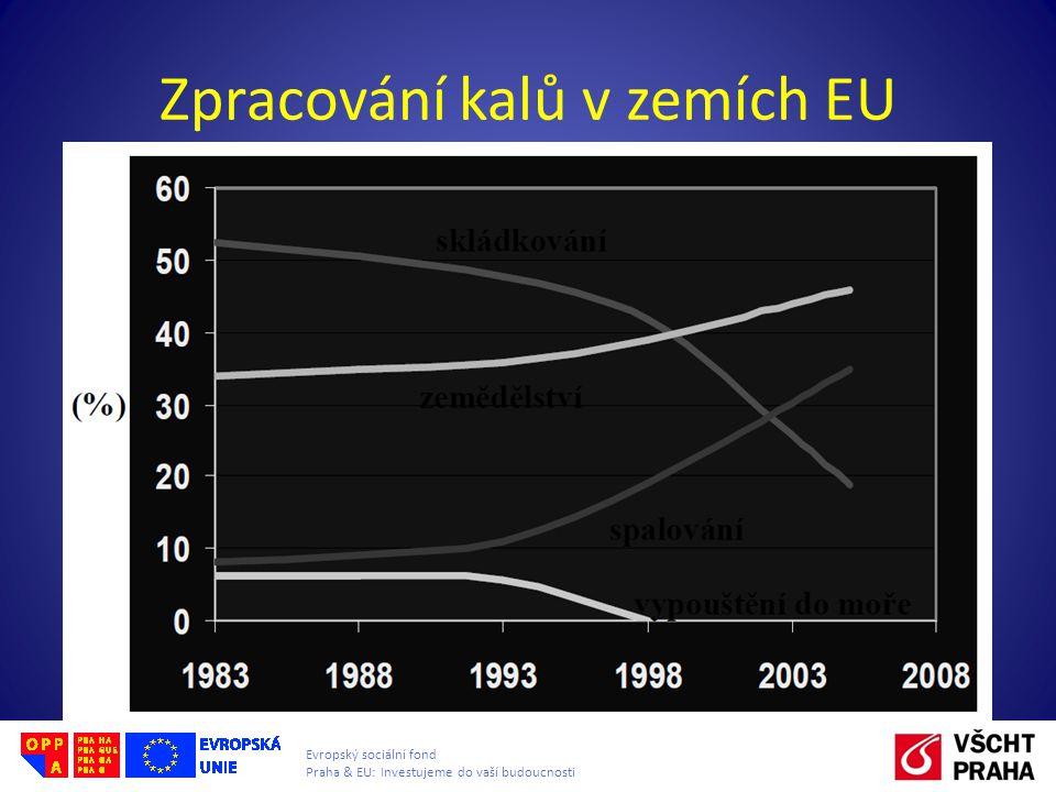 Evropský sociální fond Praha & EU: Investujeme do vaší budoucnosti Zpracování kalů v zemích EU