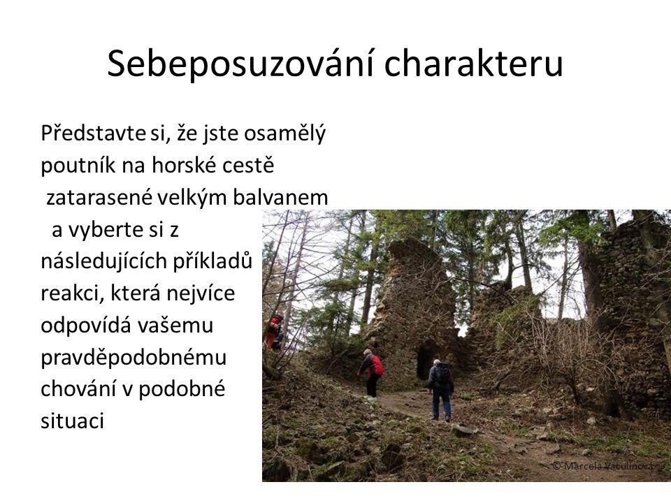 Sebeposuzování charakteru Představte si, že jste osamělý poutník na horské cestě zatarasené velkým balvanem a vyberte si z následujících příkladů reak