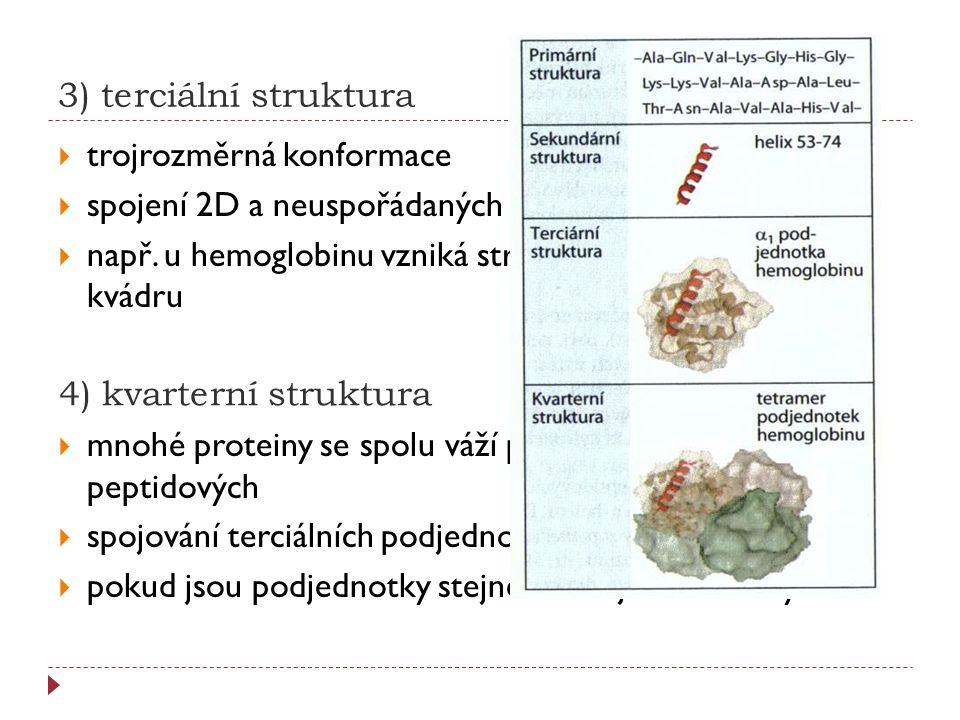 3) terciální struktura  trojrozměrná konformace  spojení 2D a neuspořádaných bílkovinných úseků  např. u hemoglobinu vzniká struktura, která má tva