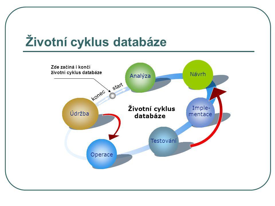 Životní cyklus databáze Analýza Nastává při vzniku potřeby nového způsobu ukládání a zpracování dat Je založena na zkoumání a identifikování problémů, možností a omezení Je rozdělena do 4 kroků:  Analyzování organizace  Definování problémů, možností a omezení  Definování cílů  Definování rozsahu Účelem je definovat jednotlivé cíle a rozsah systému