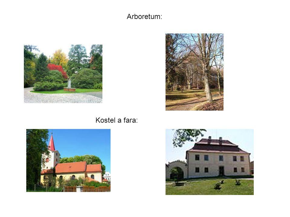 Kostel a fara: Arboretum: