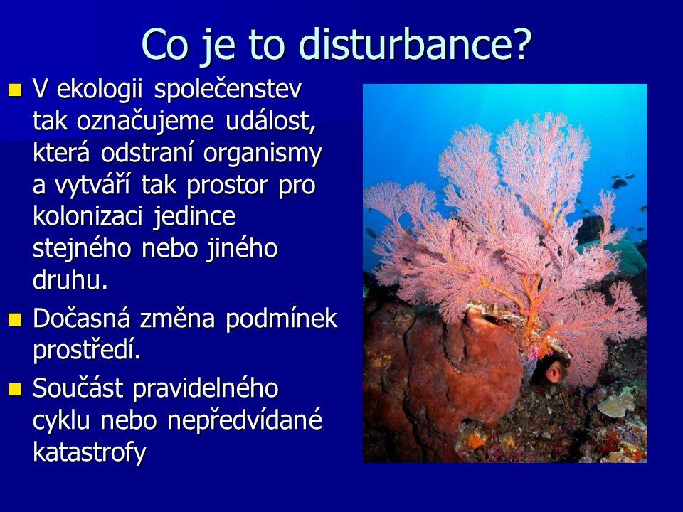Co je to disturbance? V ekologii společenstev tak označujeme událost, která odstraní organismy a vytváří tak prostor pro kolonizaci jedince stejného n