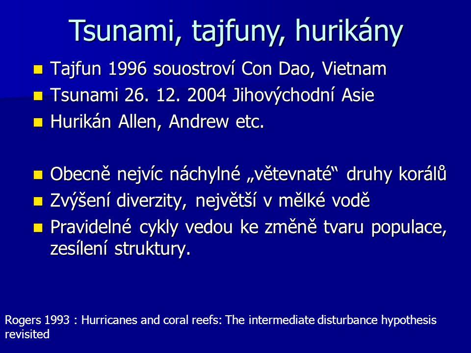 Tajfun 1996 souostroví Con Dao, Vietnam Tajfun 1996 souostroví Con Dao, Vietnam Tsunami 26. 12. 2004 Jihovýchodní Asie Tsunami 26. 12. 2004 Jihovýchod