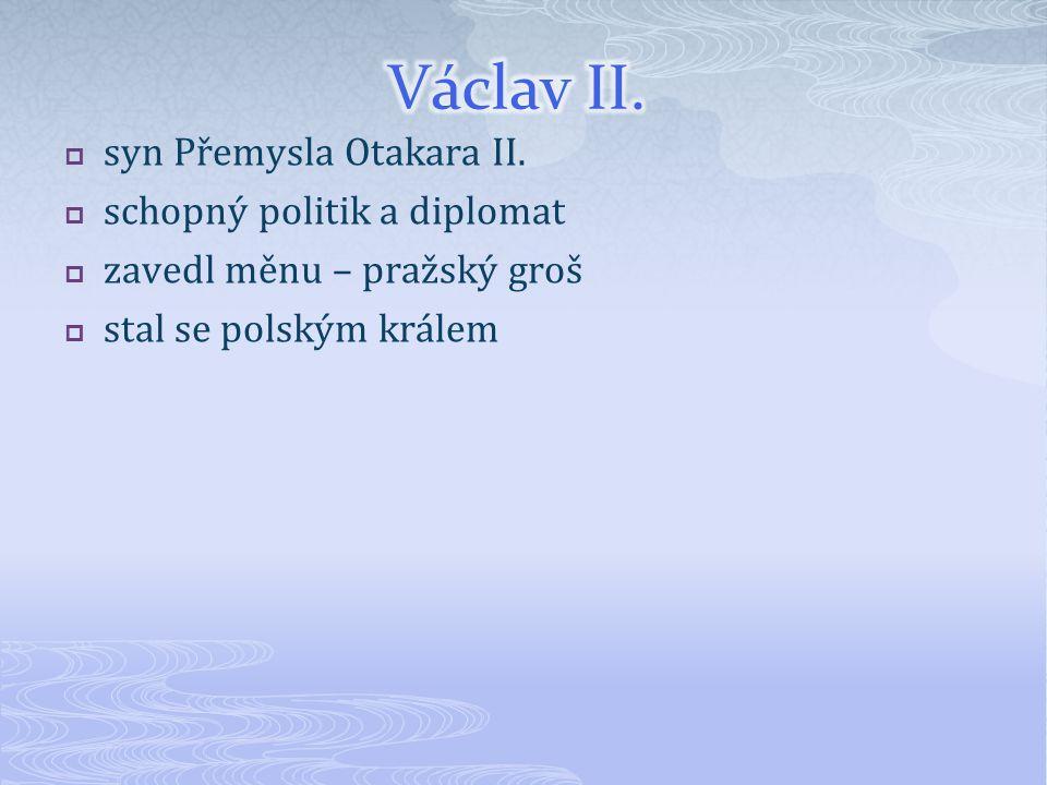  syn Přemysla Otakara II.