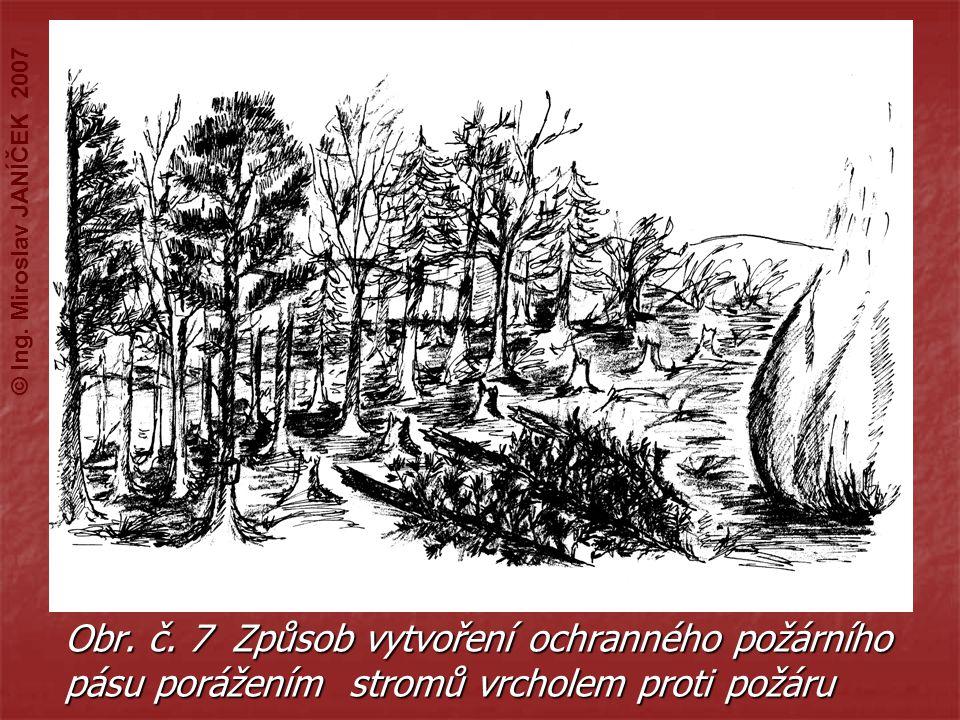 Obr. č. 7 Způsob vytvoření ochranného požárního pásu porážením stromů vrcholem proti požáru