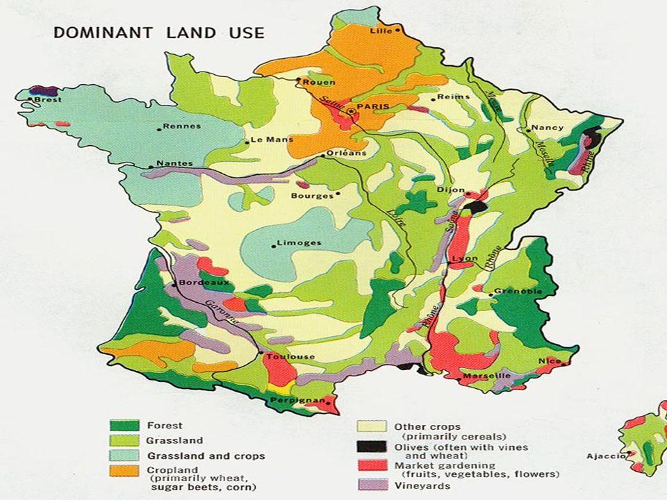 Zemědělství největší rozloha zemědělské a orné půdy v Evropě největší rozloha zemědělské a orné půdy v Evropě největší evropský producent a vývozce ob