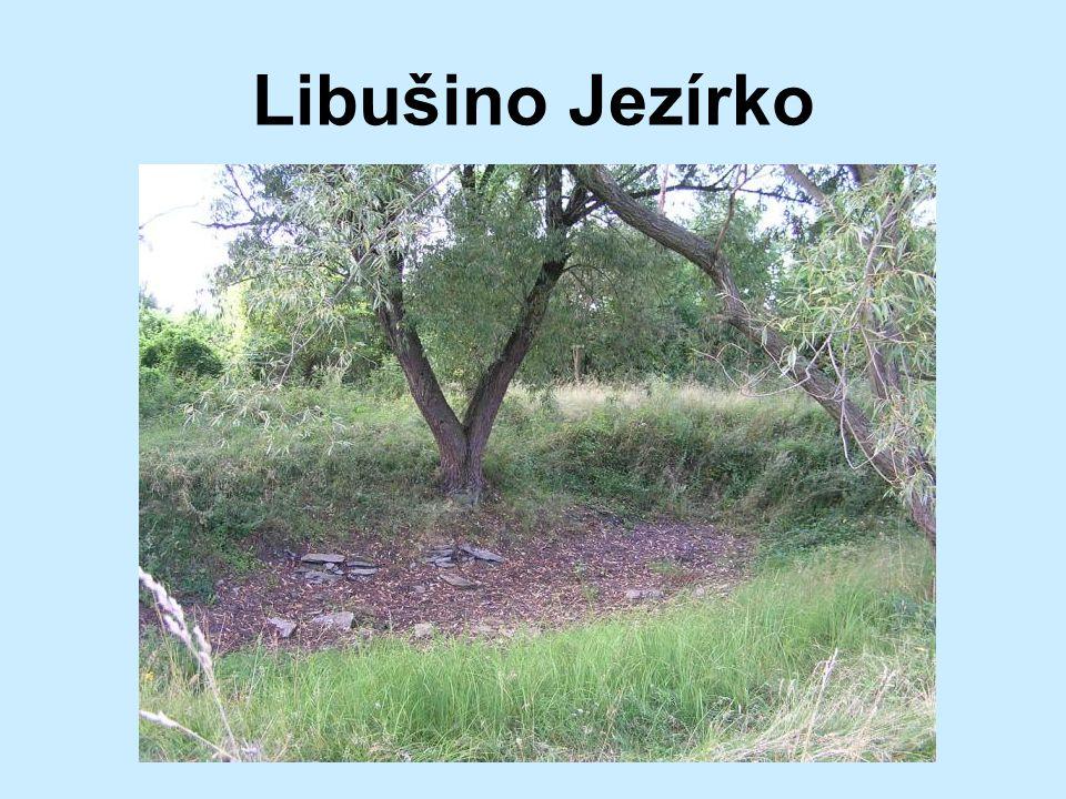 8.Název jezírka, které se nachází v zaniklém srdci slovanského hradiště?