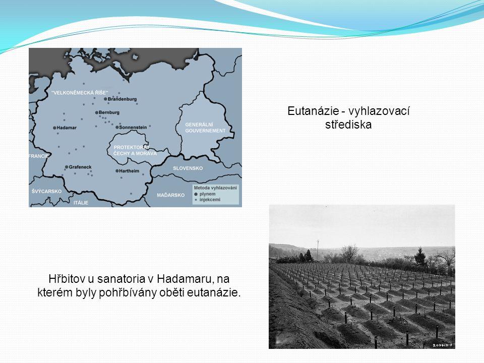 Eutanázie - vyhlazovací střediska Hřbitov u sanatoria v Hadamaru, na kterém byly pohřbívány oběti eutanázie.