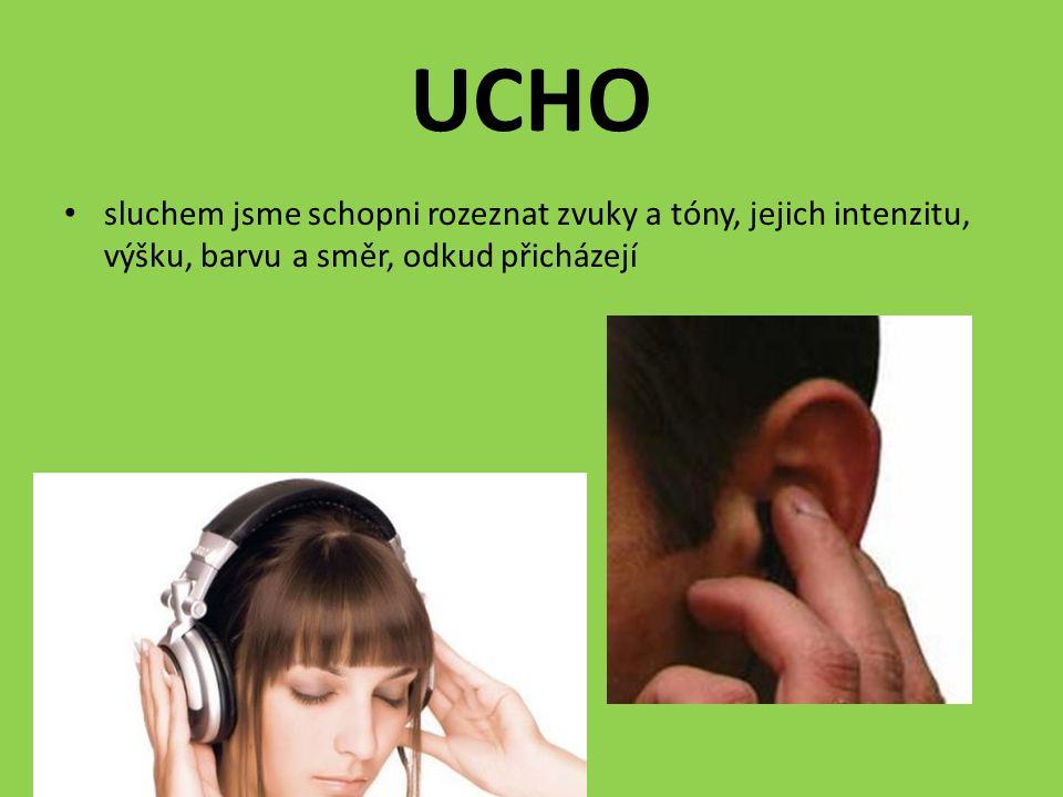 UCHO sluchem jsme schopni rozeznat zvuky a tóny, jejich intenzitu, výšku, barvu a směr, odkud přicházejí