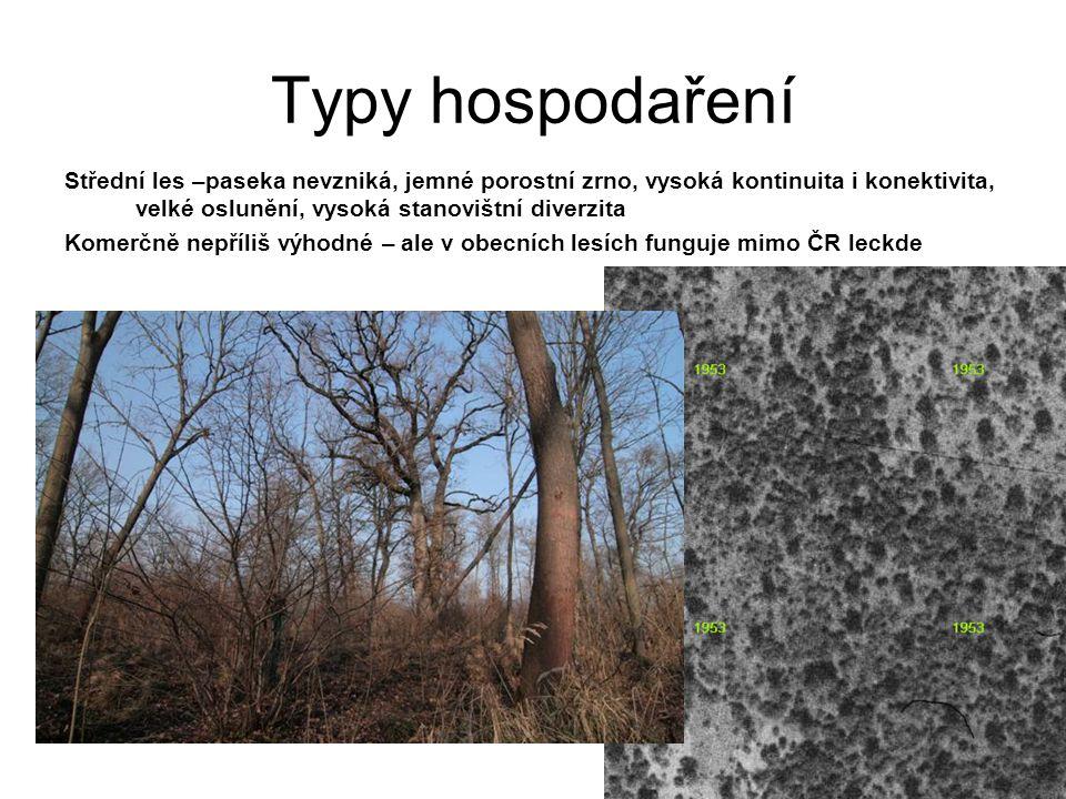 Střední les –paseka nevzniká, jemné porostní zrno, vysoká kontinuita i konektivita, velké oslunění, vysoká stanovištní diverzita Komerčně nepříliš výh