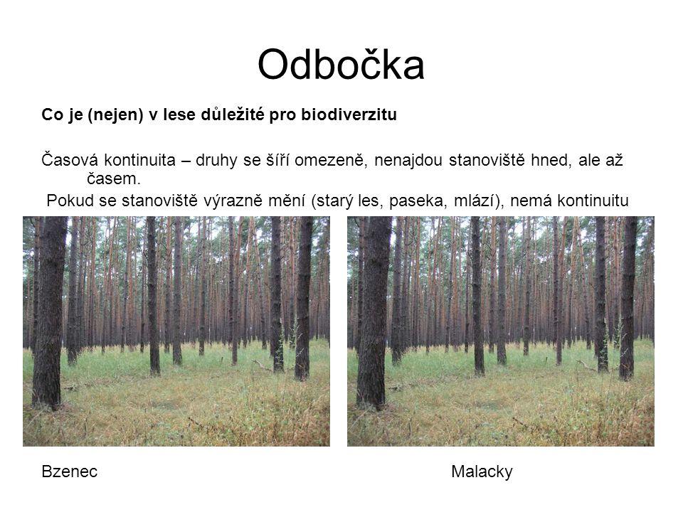 Co je (nejen) v lese důležité pro biodiverzitu Časová kontinuita – druhy se šíří omezeně, nenajdou stanoviště hned, ale až časem. Pokud se stanoviště