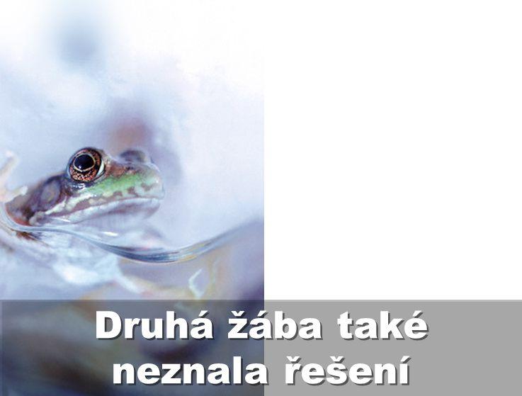Druhá žába také neznala řešení