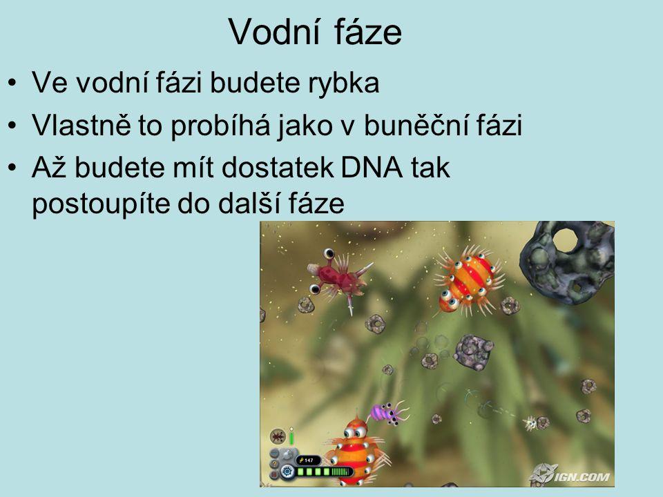Vodní fáze Ve vodní fázi budete rybka Vlastně to probíhá jako v buněční fázi Až budete mít dostatek DNA tak postoupíte do další fáze