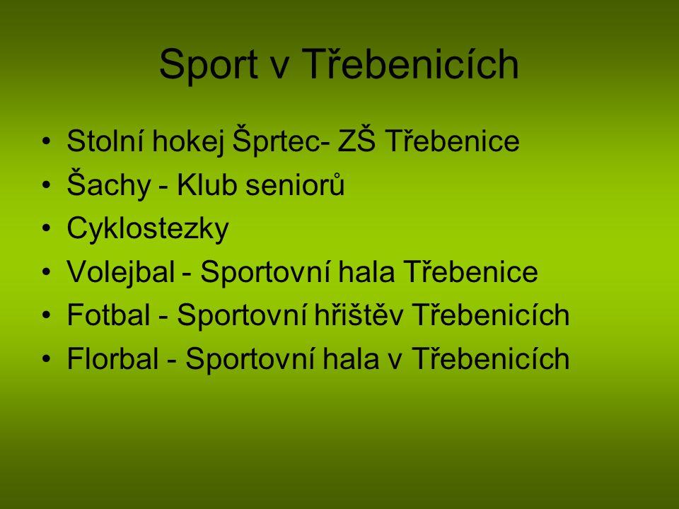 Sport v Třebenicích Stolní hokej Šprtec- ZŠ Třebenice Šachy - Klub seniorů Cyklostezky Volejbal - Sportovní hala Třebenice Fotbal - Sportovní hřištěv