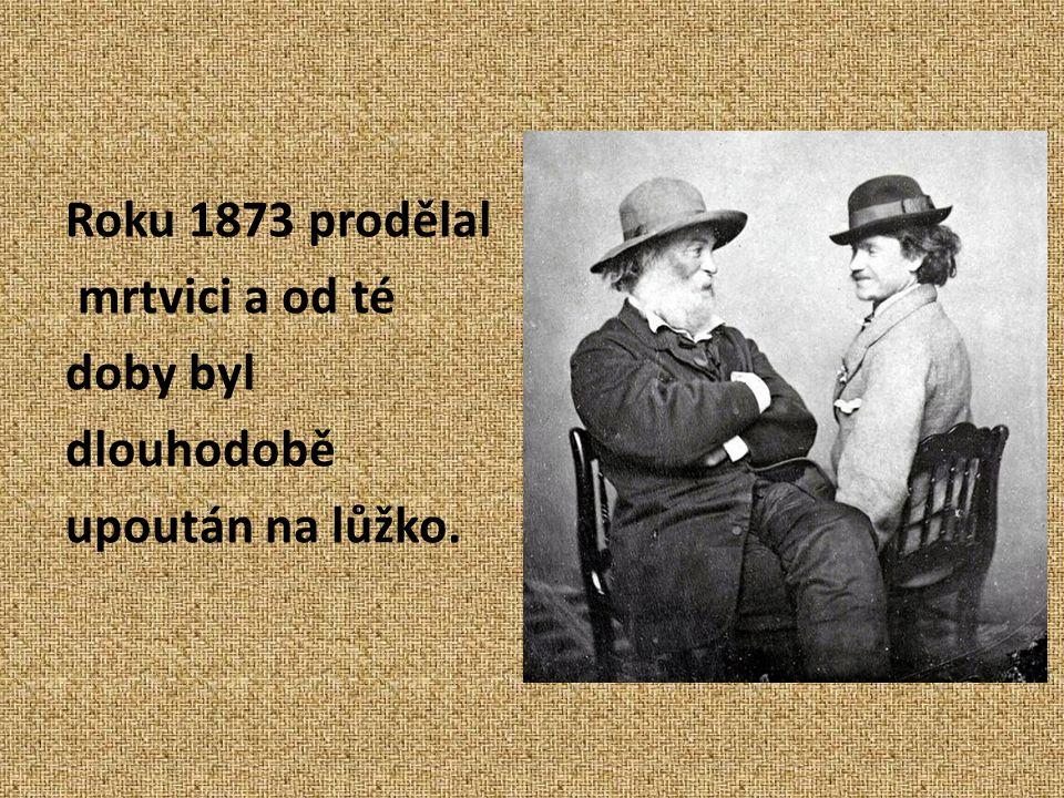 Roku 1873 prodělal mrtvici a od té doby byl dlouhodobě upoután na lůžko.