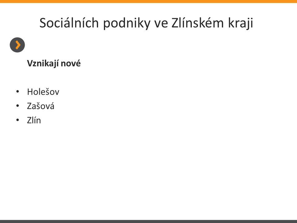 Sociálních podniky ve Zlínském kraji Vznikají nové Holešov Zašová Zlín