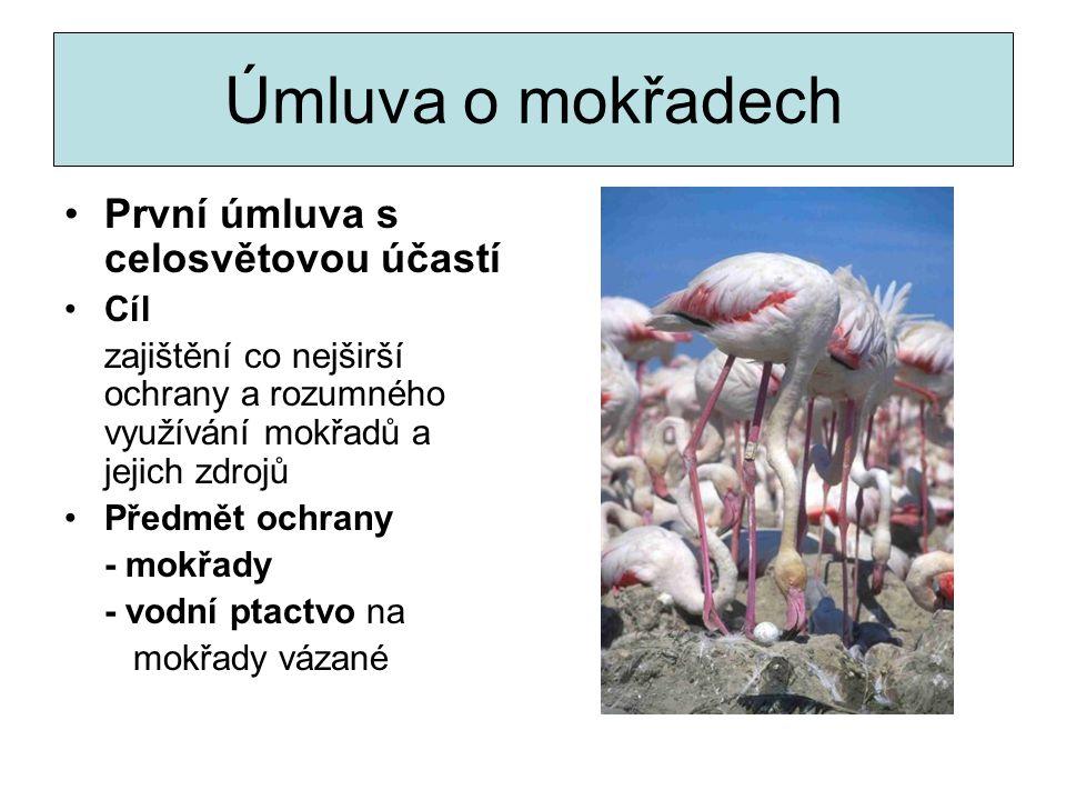- M. o porozumění při ochraně jeřába sibiřského - M. o porozumění při ochraně kolihy tenkozobé