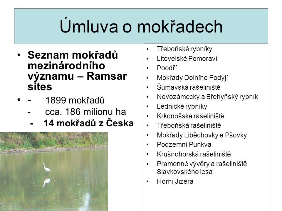 Úmluva o mokřadech Seznam mokřadů mezinárodního významu – Ramsar sites - 1899 mokřadů -cca. 186 milionu ha - 14 mokřadů z Česka Třeboňské rybníky Lito