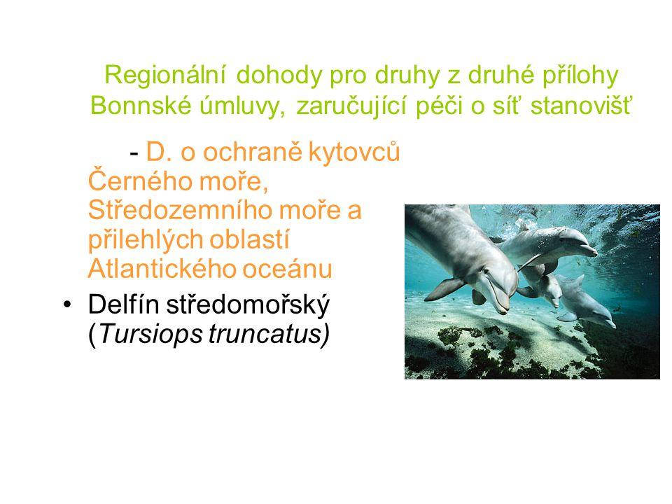 Regionální dohody pro druhy z druhé přílohy Bonnské úmluvy, zaručující péči o síť stanovišť - D. o ochraně kytovců Černého moře, Středozemního moře a