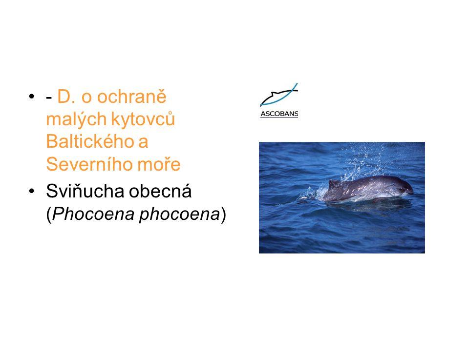- D. o ochraně malých kytovců Baltického a Severního moře Sviňucha obecná (Phocoena phocoena)