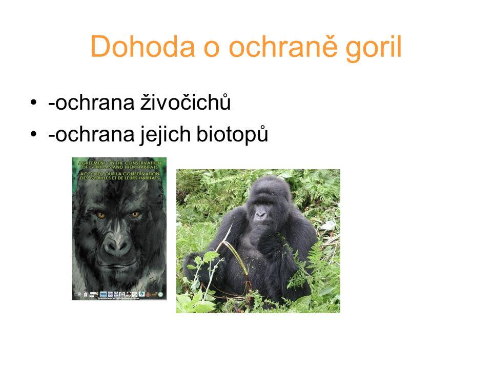 Dohoda o ochraně goril -ochrana živočichů -ochrana jejich biotopů