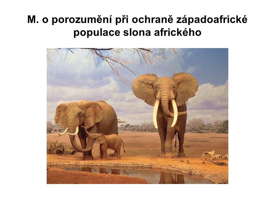 M. o porozumění při ochraně západoafrické populace slona afrického