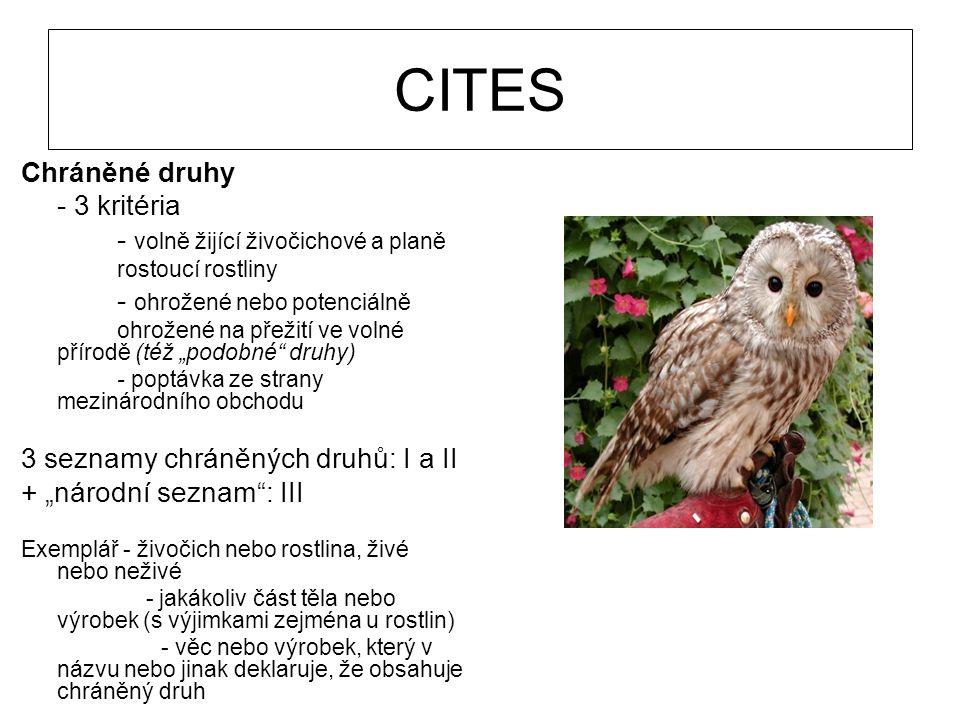 CITES Chráněné druhy - 3 kritéria - volně žijící živočichové a planě rostoucí rostliny - ohrožené nebo potenciálně ohrožené na přežití ve volné přírod