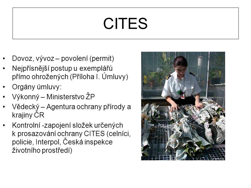 CITES Dovoz, vývoz – povolení (permit) Nejpřísnější postup u exemplářů přímo ohrožených (Příloha I. Úmluvy) Orgány úmluvy: Výkonný – Ministerstvo ŽP V