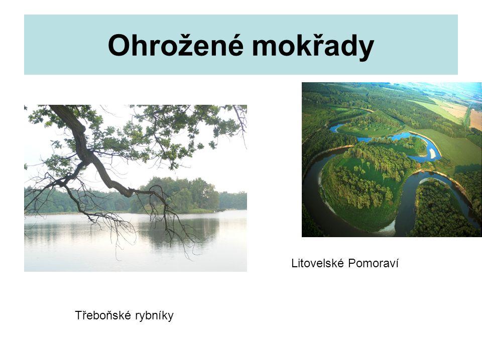 Cartagenský protokol o biologické bezpečnosti Přijat29.