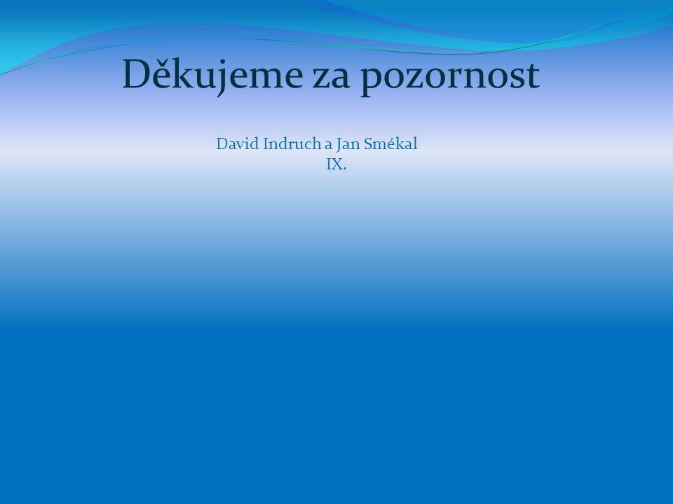 Děkujeme za pozornost David Indruch a Jan Smékal IX.