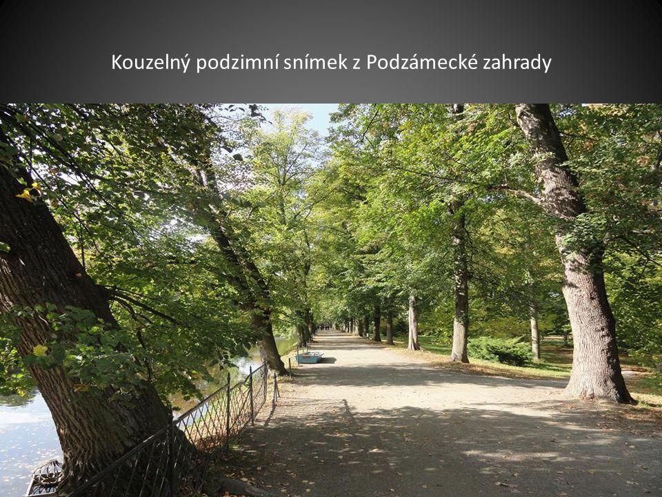 Pohled na zámek z Podzámecké zahrady